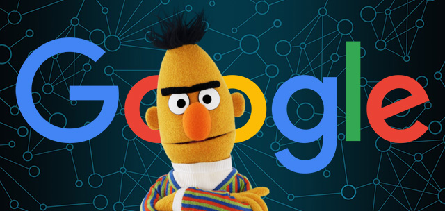 BERT search algorithm update
